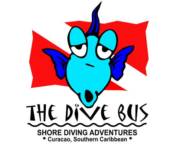 The Dive Bus